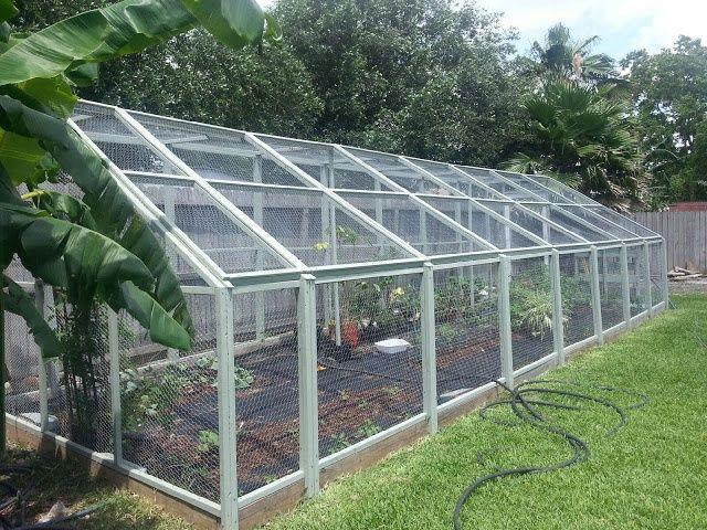 Enclosed garden enclosed garden area enclosed with for Enclosed vegetable garden designs