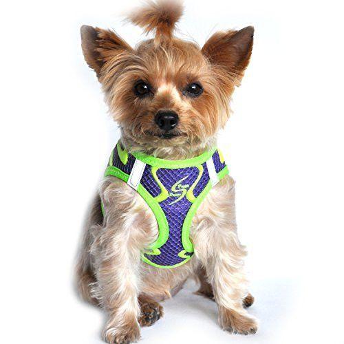 American River Neon Sport Dog Harnesses - Ultra Violet (S)