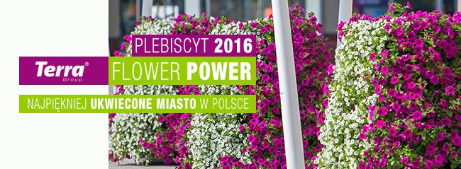 terra flower power - the most beautif city in Poland - contest