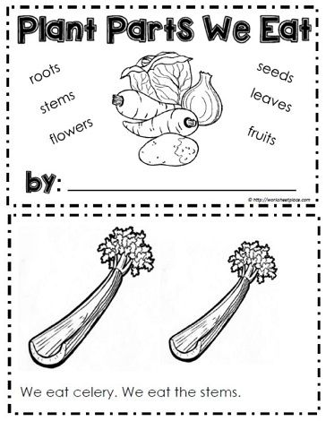 booklet for plants we eat classroom activities teaching plants plants parts of a plant. Black Bedroom Furniture Sets. Home Design Ideas