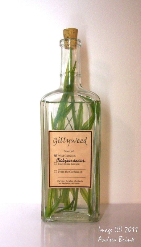 "Gillyweed label ""Potions cabinet"" in the laundry room to hold supplies for doing the laundry"