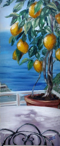 Lemon Tree, a painting by me