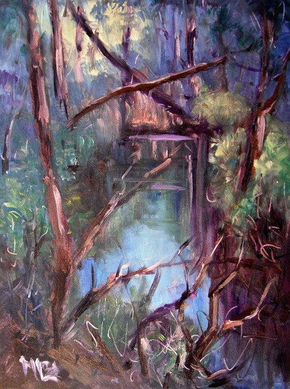 'Day 25 Tangled River- Daylesford' The last rays of evening light on this little corner of the river are captured in this little painting. There was a tangle of fallen trees, twigs and overhanging branches. The banks were covered in tangles of green ferns.