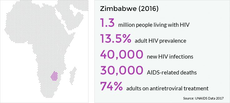 Zimbabwe has the fifth highest HIV prevalence in Sub-Saharan Africa, with 1.3 million people living with HIV. AIDS-related deaths, however, have more than halved since 2013, from 61,000 in 2013 to 30,000 in 2016.