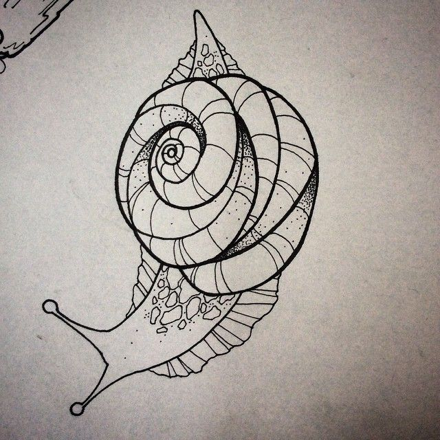 Image result for traditional snail tattoo
