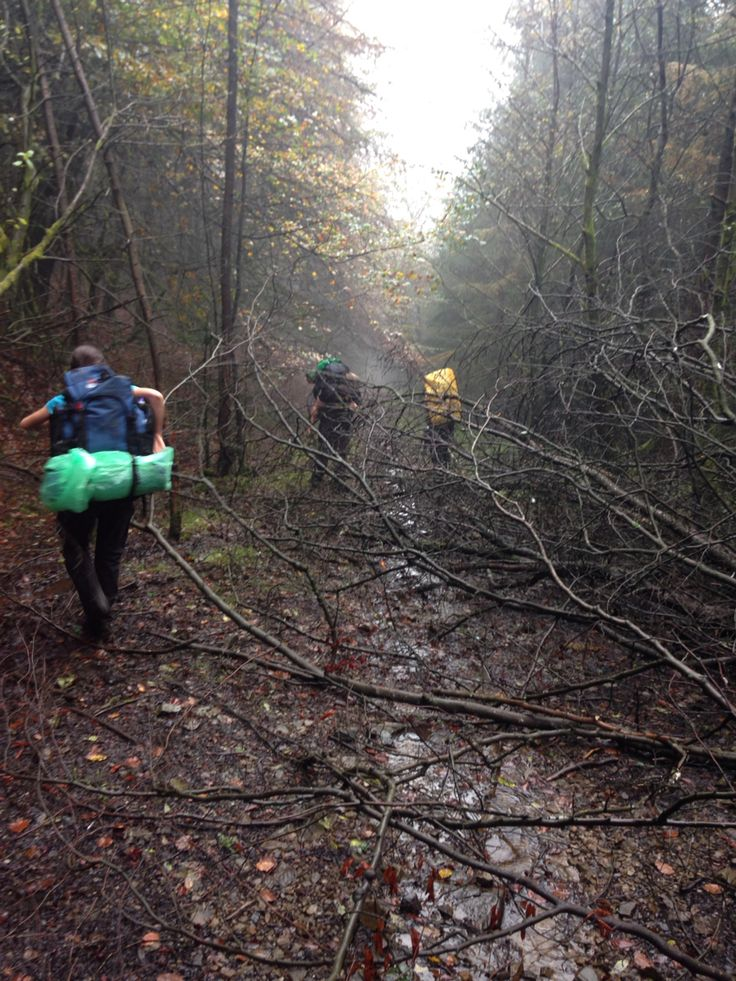 Silver dofe fighting there way through the woods to get to the end of there first day #whatwedo #Atc #aircadets xxxxx