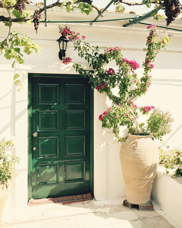 Mediterranean Style Front Doors: Flowers - Mediterranean Home Decor