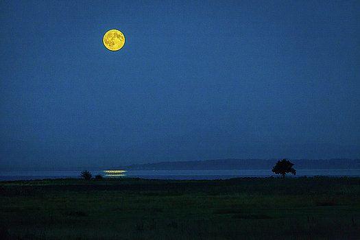 Art Calapatia - Moonrise Reflection 3