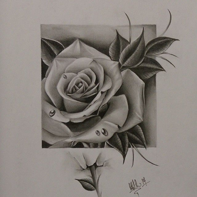 All done with this super fun freehand rose pencil drawing for my good homie @son_0f_a_gun! Let me know what you think man. Thanks for viewing! #art #artwork #rose #roses #rosedrawing #pencildrawings #blackandgreyrose #freehand #drawing #realistic #realisticrose #beautifulrose #beautiful #love #blessed #passion #devotion #cliffink #nofilter #art_collective