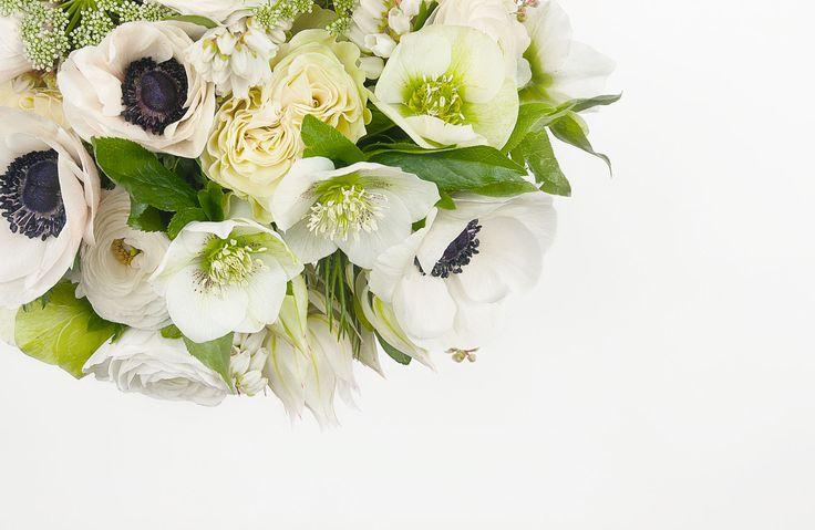 Designed by Made Somewhere | madesomewhere.com.au | Ipsen Botanica branding and collateral