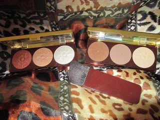 Whats Inside Your Beauty Bag?: Physicians Formula Bronze Booster Highlight & Cont...