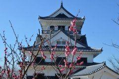 千葉県館山市の津山城は地元では有名な桜の名所 地上から見る梅もいいけど天守閣から見る景色は素晴らしいですよ ぜひ一度行ってみてくださいね tags[千葉県]