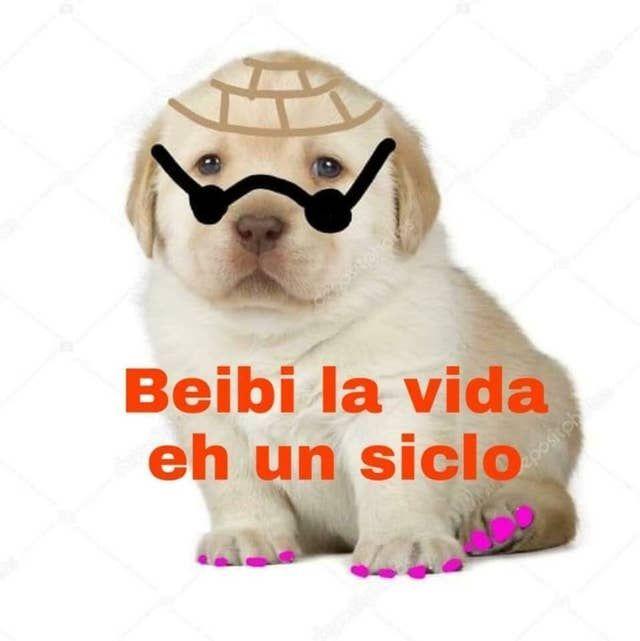 25 Memes Del Perrito Tierno Que Son Efectivamente Muy Tiernos 25 Memes Del Perrito Tierno Que Son Efectiv In 2020 Funny Spanish Memes Funny Memes Funny Dog Memes