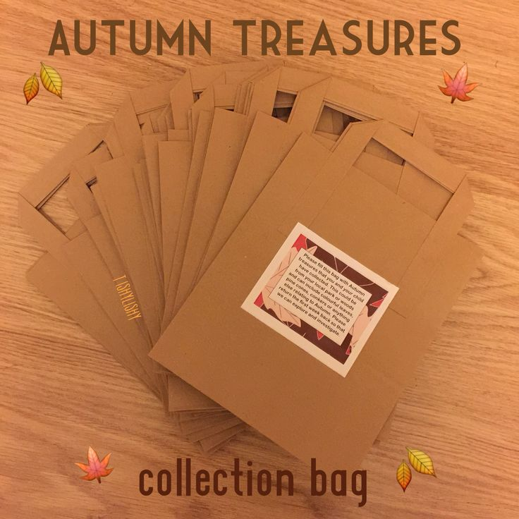 Family homework... Autumn collection bag. Children asked to collect autumnal items to bring back to school.