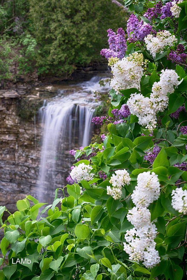 Borer's Falls, Hamilton, Ontario