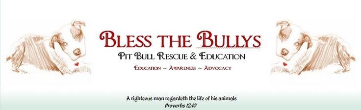 BSL Get educated.  It amazes me how many people are unaware of BSL. In a nutshell, this is a law that allows the government to force you to surrender your dog to be put to death.  For many people, moving is not an option and mass euthanasia of dogs is occurring quietly.  Do your research, start now. DO NOT assume this applies solely to pit bulls, while they remain the primary target of this ignorance and racism, check out the list of breeds this law includes, what you see may surprise u…