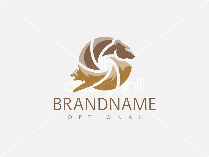 New logo design for sale on Design Hill - animal, photography, eye, media, video, circle, nature, creative, film, camera, lens, cat, bear, picture, wildlife, motion, shutter, wolf, lynx, fur, photographer, entertainment, art, movie, trading, resort, hunting, adventure, mountain, forest, tame, wild, beast, logo, design, template,