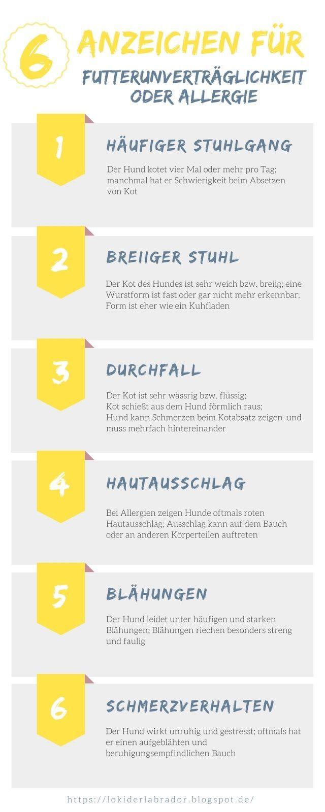 Futterumstellung 6 Anzeichen Fur Futterunvertraglichkeiten Infografik Hundeernahrung Hunde Ernahrung Hunde