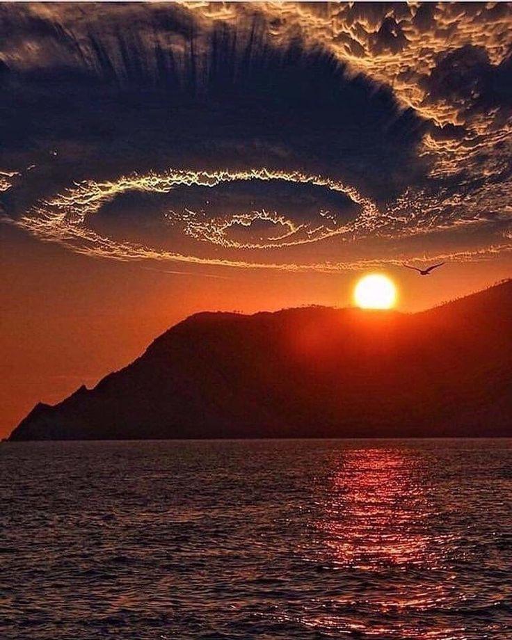 ланка фото на заходящем солнце вша кусается
