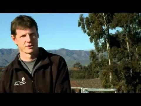 Nautilus Estate winemaker Clive Jones talks food and wine pairing