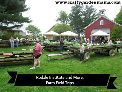 Rodale and More: TG - Crafty Garden Mama