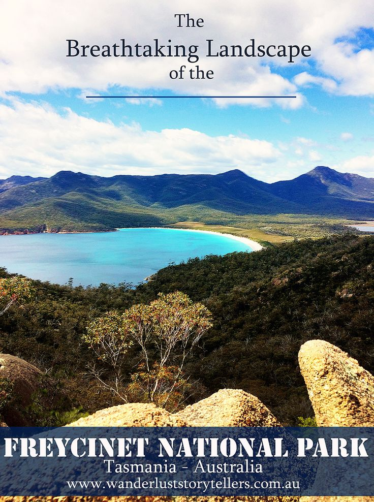 Ah, Tasmania! So much natural beauty everywhere you look. Perfectly crafted colourful landscapes as far as the eye can see. From flower covered hills to rugged granite peeks of the one and only Freycinet National Park. Please click the photo to read about this incredible place in Australia! l www.wanderluststorytellers.com.au