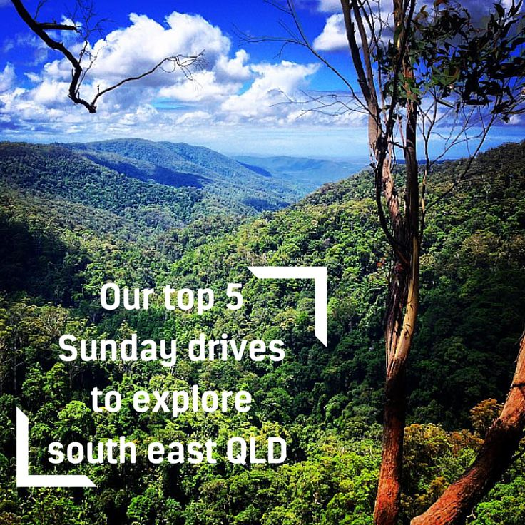 We've picked our top five Sunday drives for sightseeing, scenery and serenity in SEQ! http://www.racq.com.au/about/blog/2016/july/our-top-five-sunday-drives-to-explore-south-east-queensland?cat=&archive=