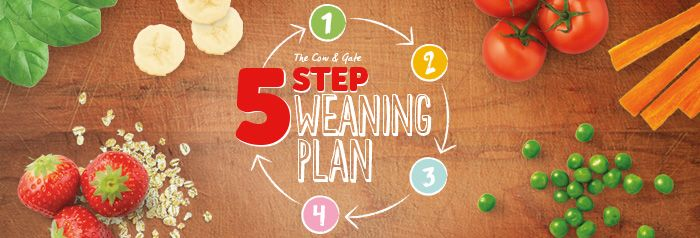 We've just completed the easy-peasy 5 Step Weaning Plan! From first spoonfuls to 3 meals a day.