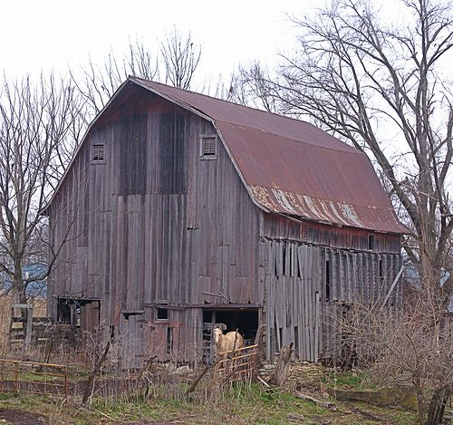 1000+ Images About Old Country Barns On Pinterest