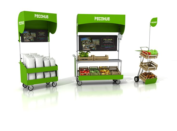 Proyecto - Trabajo grupal - SIUS Diseño de una familia de carros de venta ambulante de verduras para la organización PECOHUE