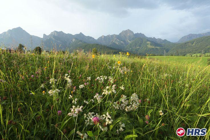 Auf geht's ins Tiroler #Ötztal. Erholt euch gut im 4-Sterne #Hotel Ferienschlössl in #Tirol - Haiming. Unternehmt schöne Touren in der Natur zum Ambergersee oder zur Haiminger Alm. Das DZ zu zweit bekommt ihr schon für 109€ inkl. Halbpension.