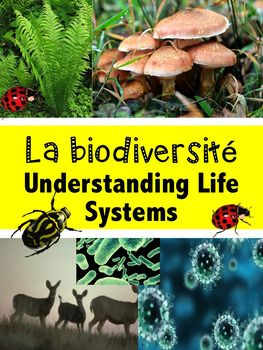 """French Immersion, Grade 6 ScienceIntegrate this resource in your science unit about """"La biodiversit"""" with accurate information at the reading level of your French Immersion students!This resource is intended to develop the vocabulary and content about the Biodiversity unit in French, support the understanding  and impact of living organisms and provide  students with some activities they will enjoy completing.Learn in French the essential vocabulary about """"La biodiversit""""  to support your…"""