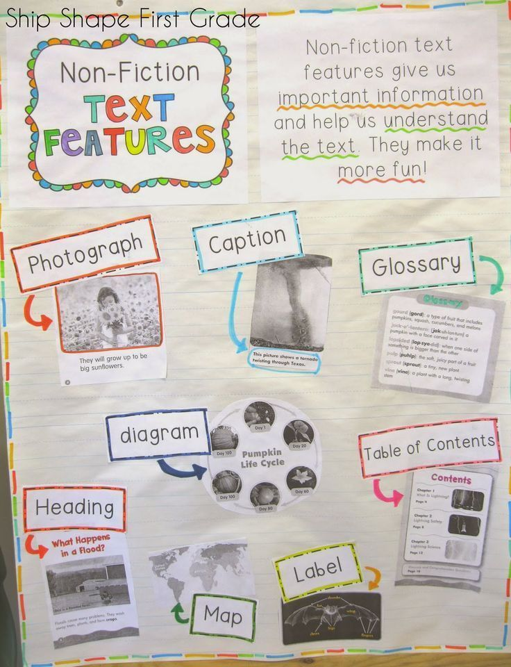 First Grade: non-fiction text features anchor chart ... this is what I want for each child during our Science unit on penguins