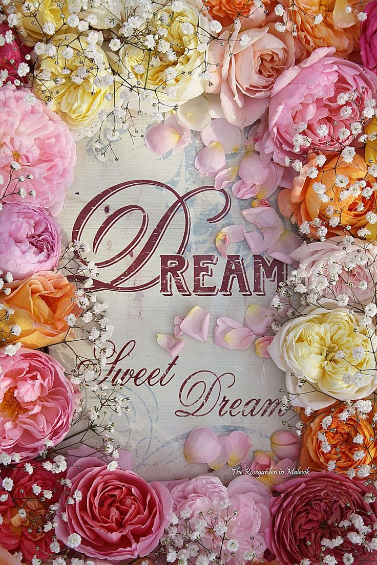 ♥Dream Sweet Dreams♥