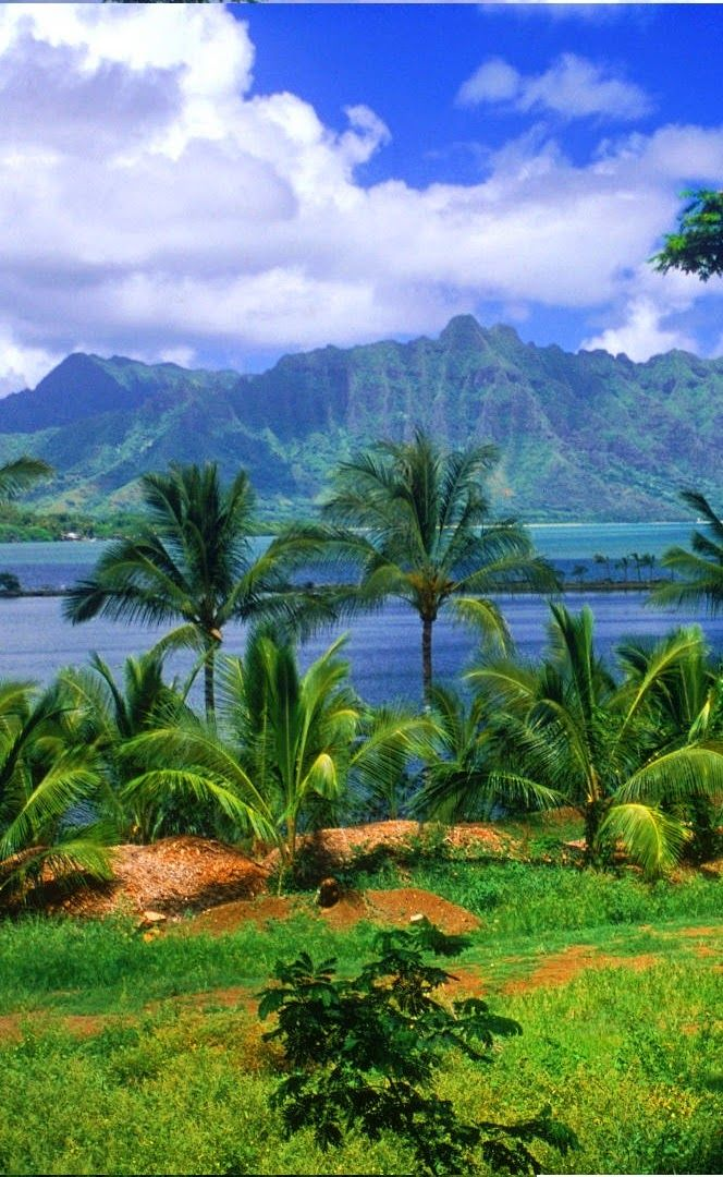 Tahiti island beach,beautiful and diverse
