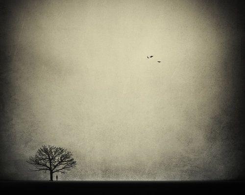 by Brahim Hannane