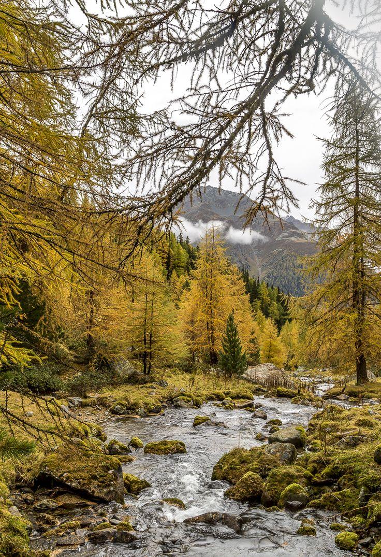 Lais da Macun   Engadin   Swiss National Park #IndianSummer #autumn #Graubünden