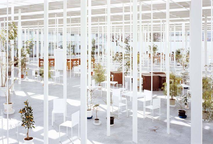 Schönheit und Klarheit - Junya Ishigami erhält Schweizer Architekturpreis