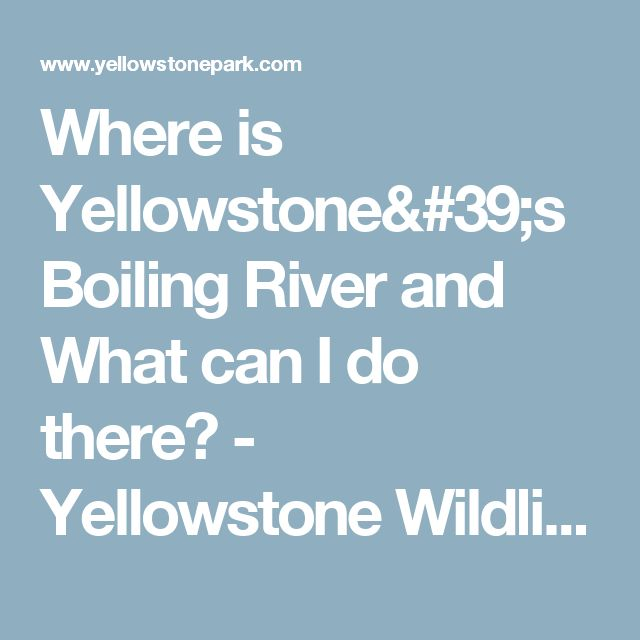 Where is Yellowstone's Boiling River and What can I do there? - Yellowstone Wildlife Guide including Grizzly, Wolves, & Bison