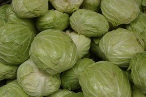 Select firm cabbage with crisp leaves for smoking.