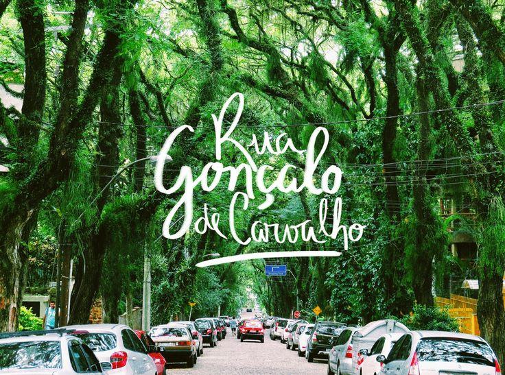 Você sabe onde fica a rua mais bonita do mundo? Em Porto Alegre!  Situada em meio a um grande túnel verde, a Gonçalo de Carvalho foi eleita a rua mais bonita do mundo. Que tal um passeio para admirar as mais de 100 árvores da espécie Tipuana, que atingem a altura de um prédio …
