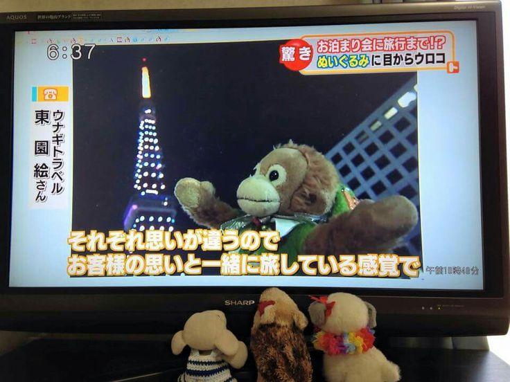秋田朝日放送に出演したトシさん