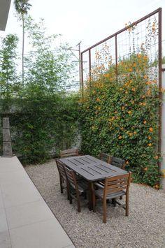 brise-vue jardin - treillis décoré de fleurs grimpantes