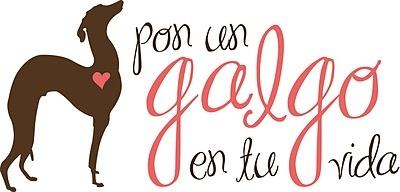 SOS Galgos http://dibujatumascota.com/