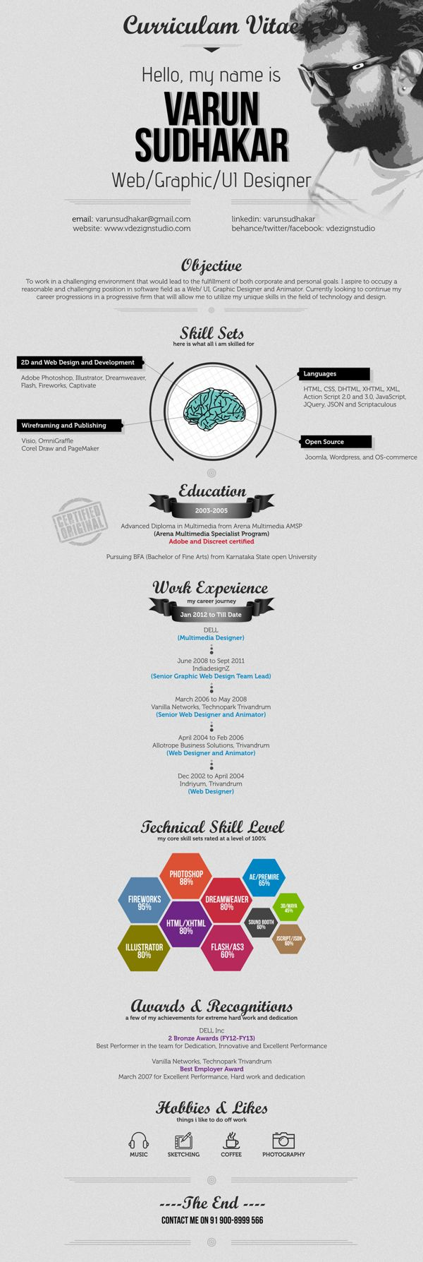 17 best images about infographic resume on