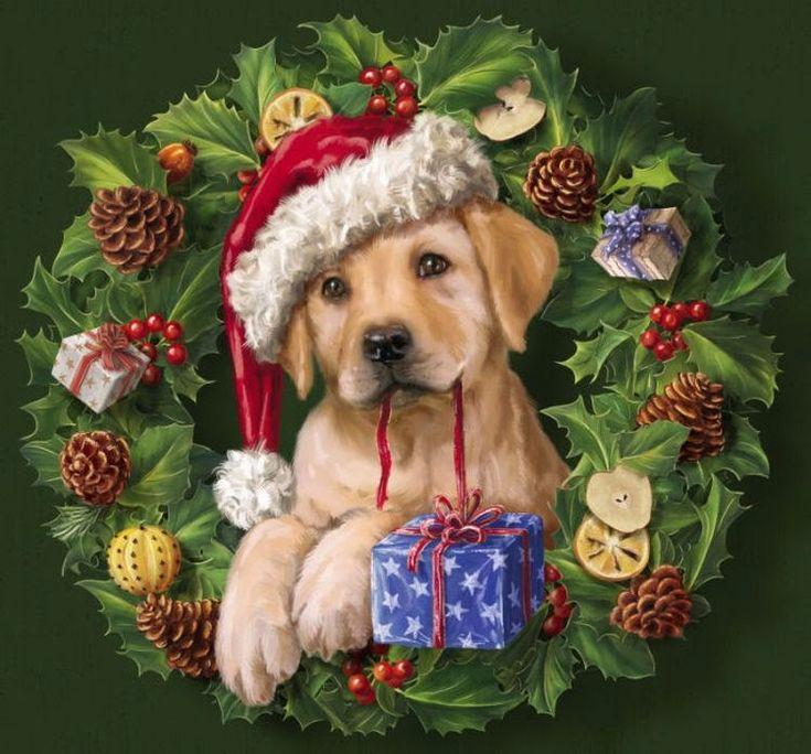 Зарубина новый, открытки с новым годом собака