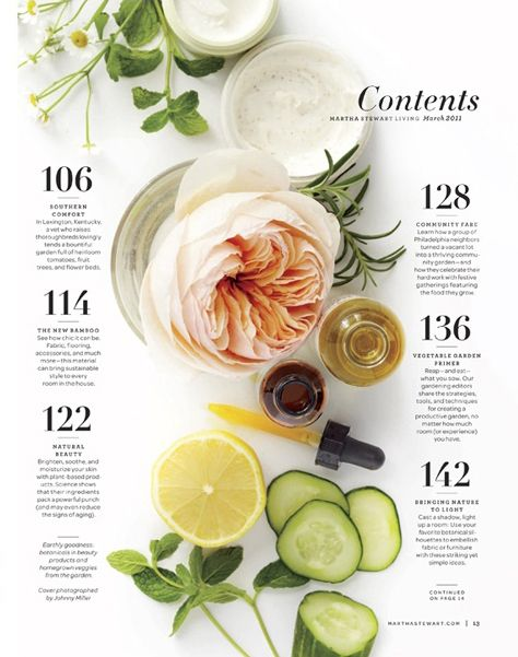 [Martha Stewart Magazine] A different layout for the Contents page, looks more eye-catching than the usual ones.