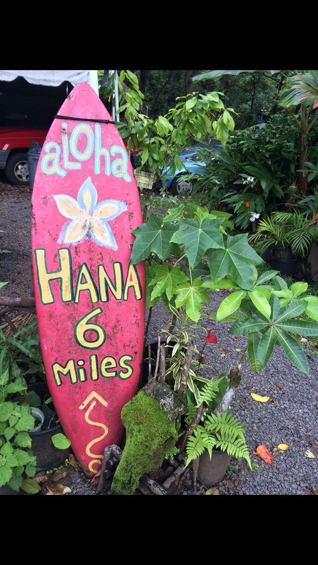 The adventure of a lifetime. Just trust me on this. I recently went back to Hana, it was even better than the first time we went! The windy, curvy roads are incredible. Literally you are on the edg...