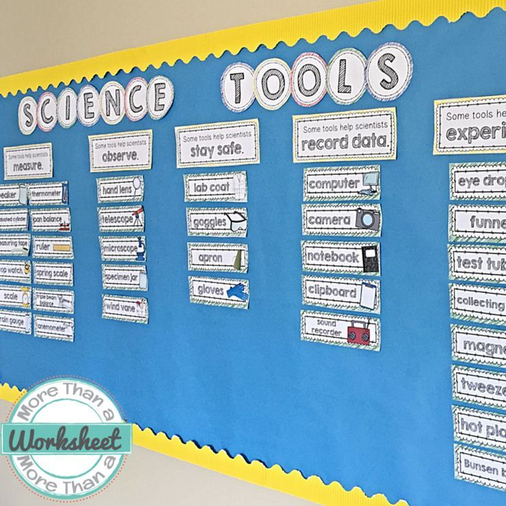 I love this science tool word wall!! The tools are sorted into different categories. So colorful! This would be perfect for teaching science tools at the beginning of the year. There are 48 tools included, and there is also an option to print word wall cards with the definitions. More Than a Worksheet $