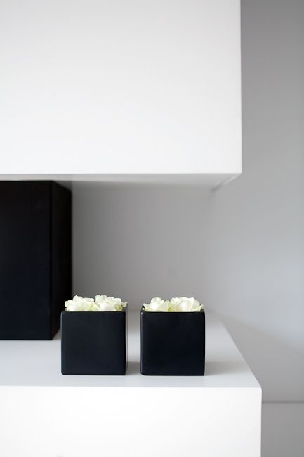 white roses in black cubes - White Out House in Belgium